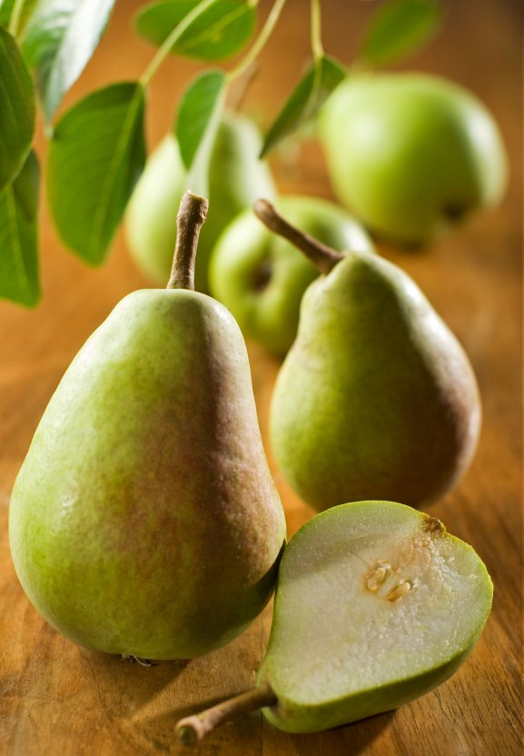 Useful information on the pear